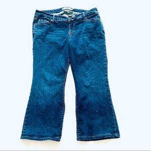 TORRID Bootcut Jeans-12 ExtraShortLength